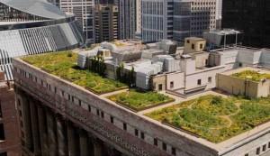 greenroof-cityhall